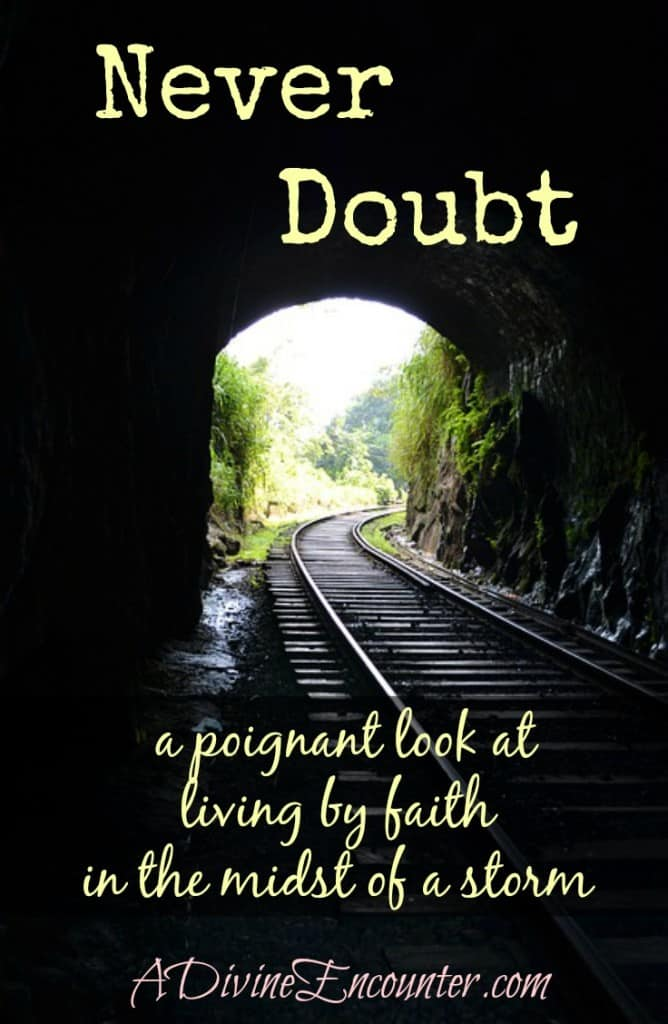 Never doubt -- living by faith; Uplifting post from a writer in the midst of a storm. http://adivineencounter.com/never-doubt
