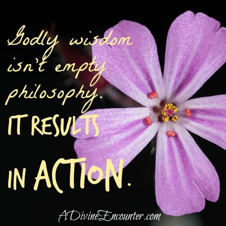 Powerful post exploring God's checklist for wisdom. (James 3:13,17) http://adivineencounter.com/pursuing-wisdom