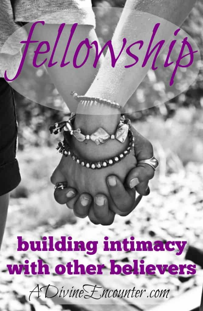 An honest post exploring true fellowship with other believers. (I John 1:7) http://adivineencounter.com/fellowship