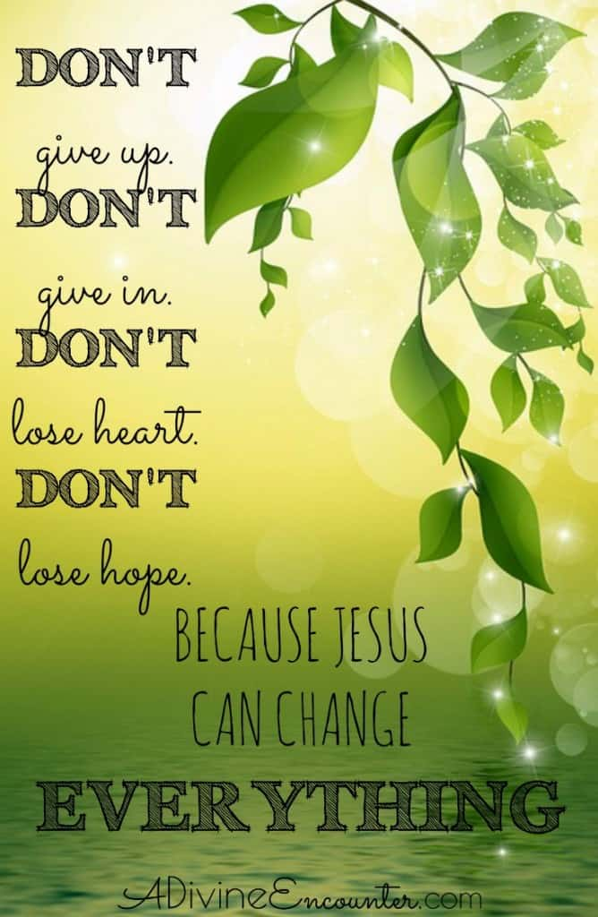 Feeling hopeless? Take heart! Consider this biblical example remarkable faith and miraculous healing, and find hope in Jesus for your hopeless situation.