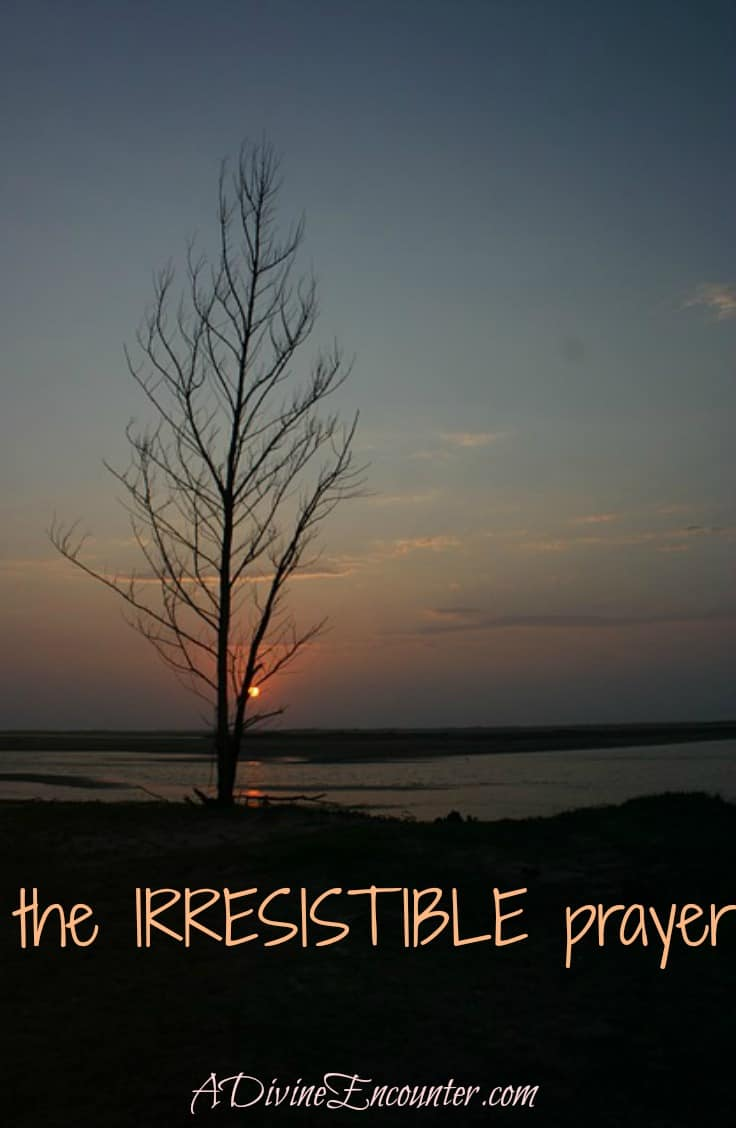 What's the prayer God loves to answer more than any other? Discover the essential key to praying humbly, using one simple phrase God won't ever refuse. (Psalm 51:17) http://adivineencounter.com/monday-minute-irresistible-prayer
