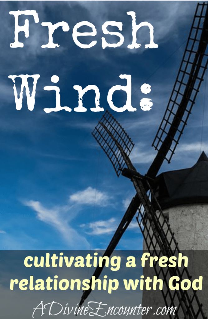 Does your time with God seem routine? This thoughtful post offers 7 ideas for cultivating a fresh relationship with God. (James 5:16) https://adivineencounter.com/fresh-wind