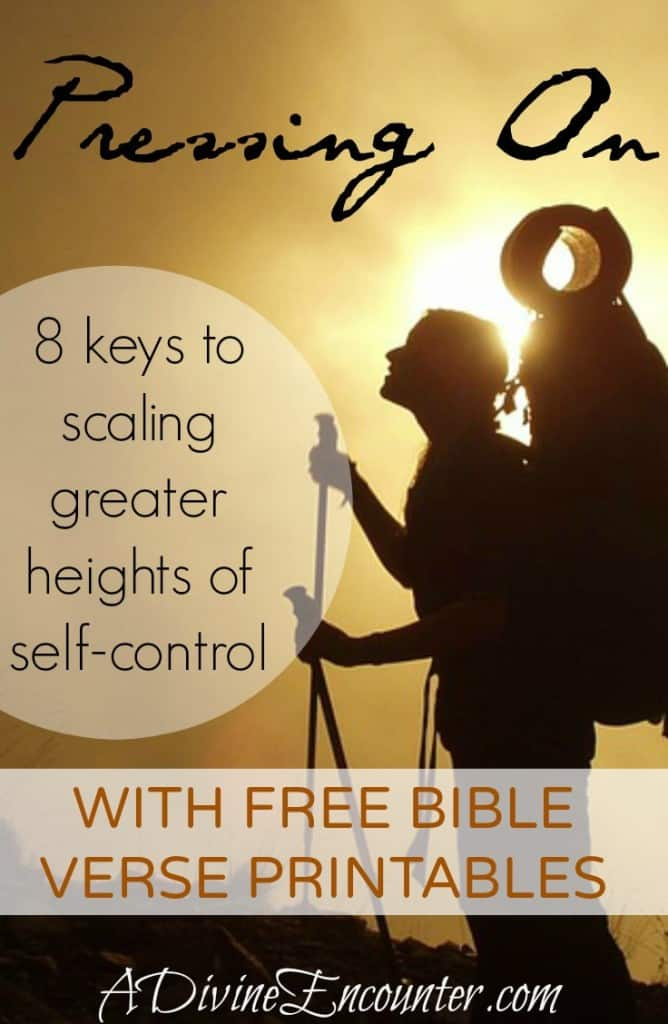 Timely post challenges Christians to consider the importance of self-control, and offers 8 important keys to developing self-control. (2 Cor. 9:7) http://adivineencounter.com/pressing-on