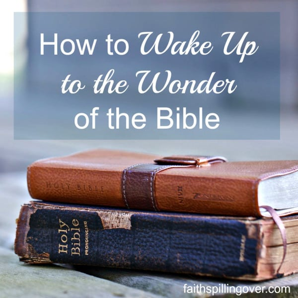 wake-up-to-wonder-2