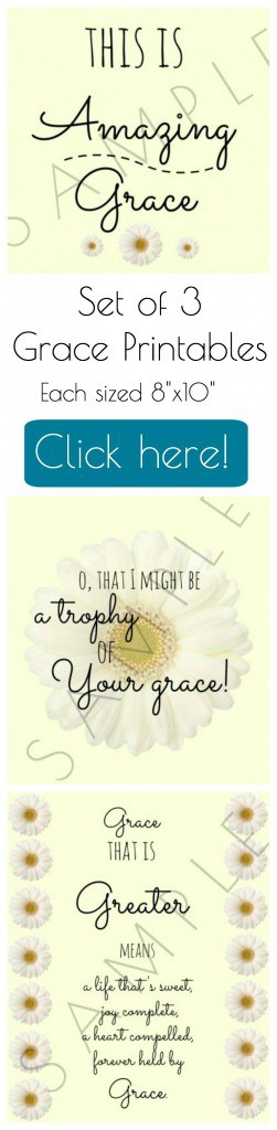 Grace Trio pin
