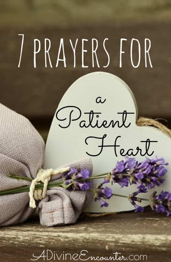 Are you a Christian who realizes the need for more patience in your life? Here are seven prayers for patience, from the pages of the Bible.