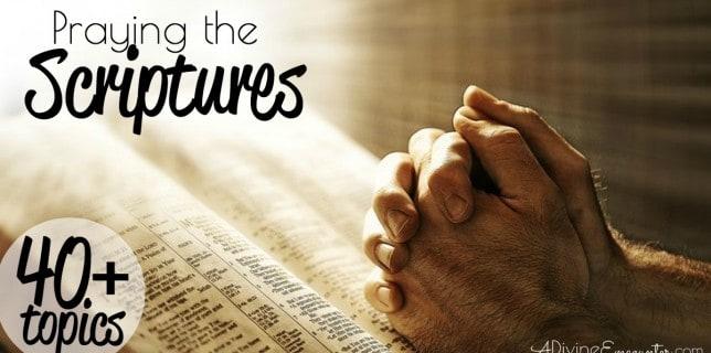 Praying the Scriptures fb