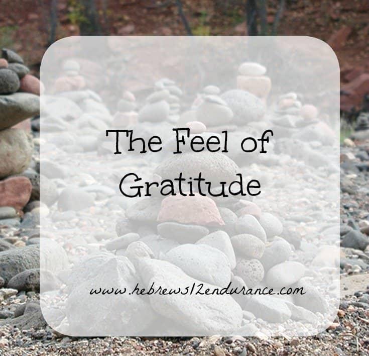 the-feel-of-gratitude